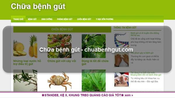 Chữa bệnh gút - chuabenhgut.com